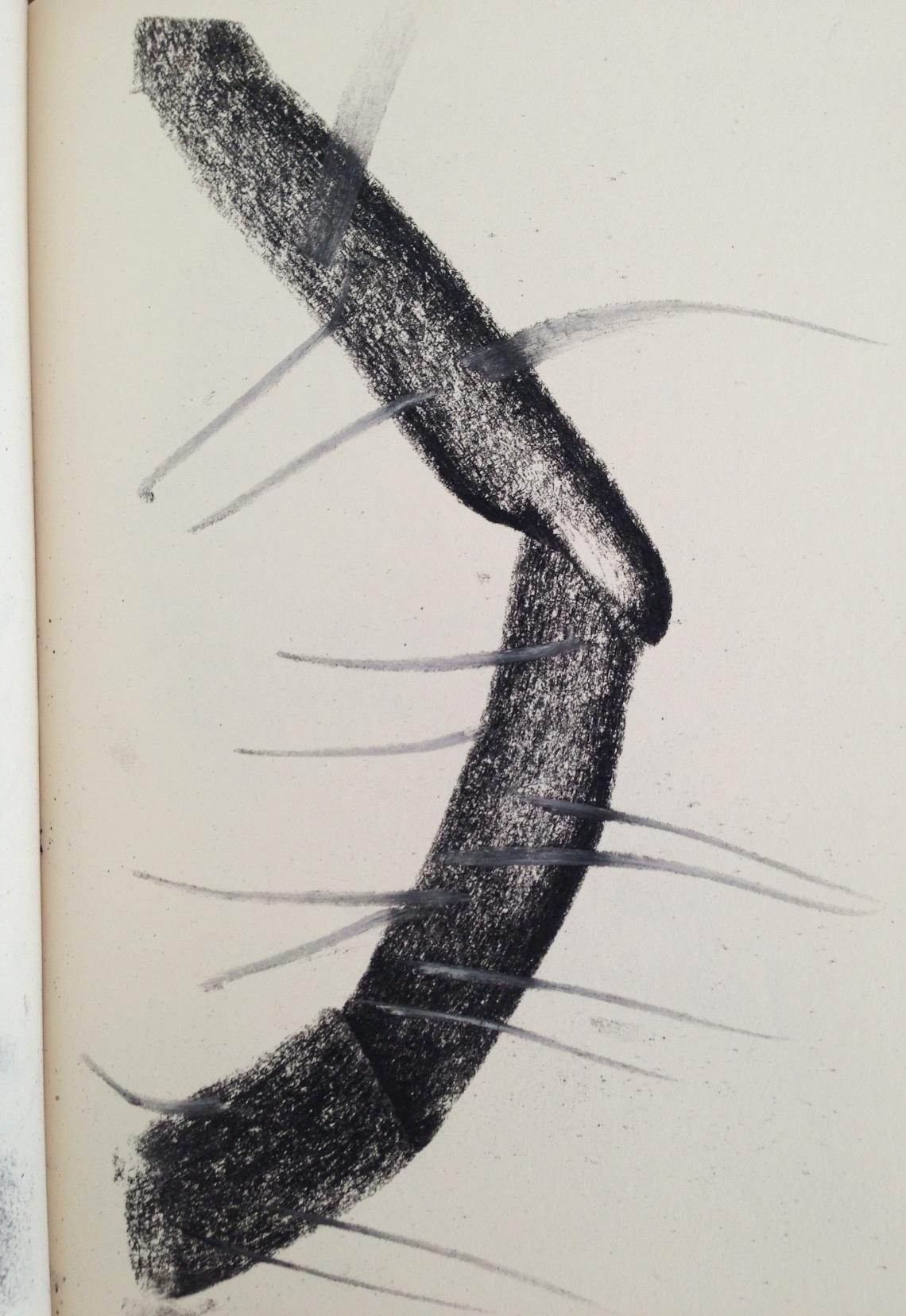 Sketchbook febrero-abril 2013, Laura Barbuto.
