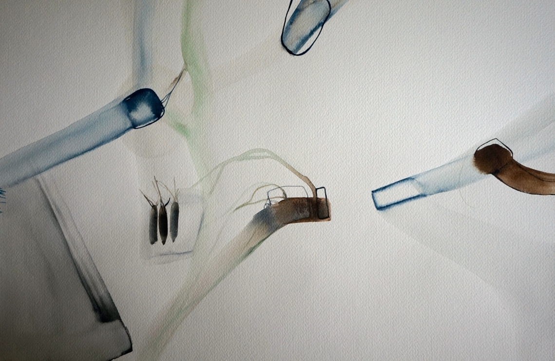 Wired 10, watercolours, 34x48 cm, Laura Barbuto, 2014