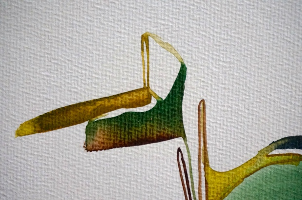 Verde, detail, watercolours, Laura Barbuto, 2013.