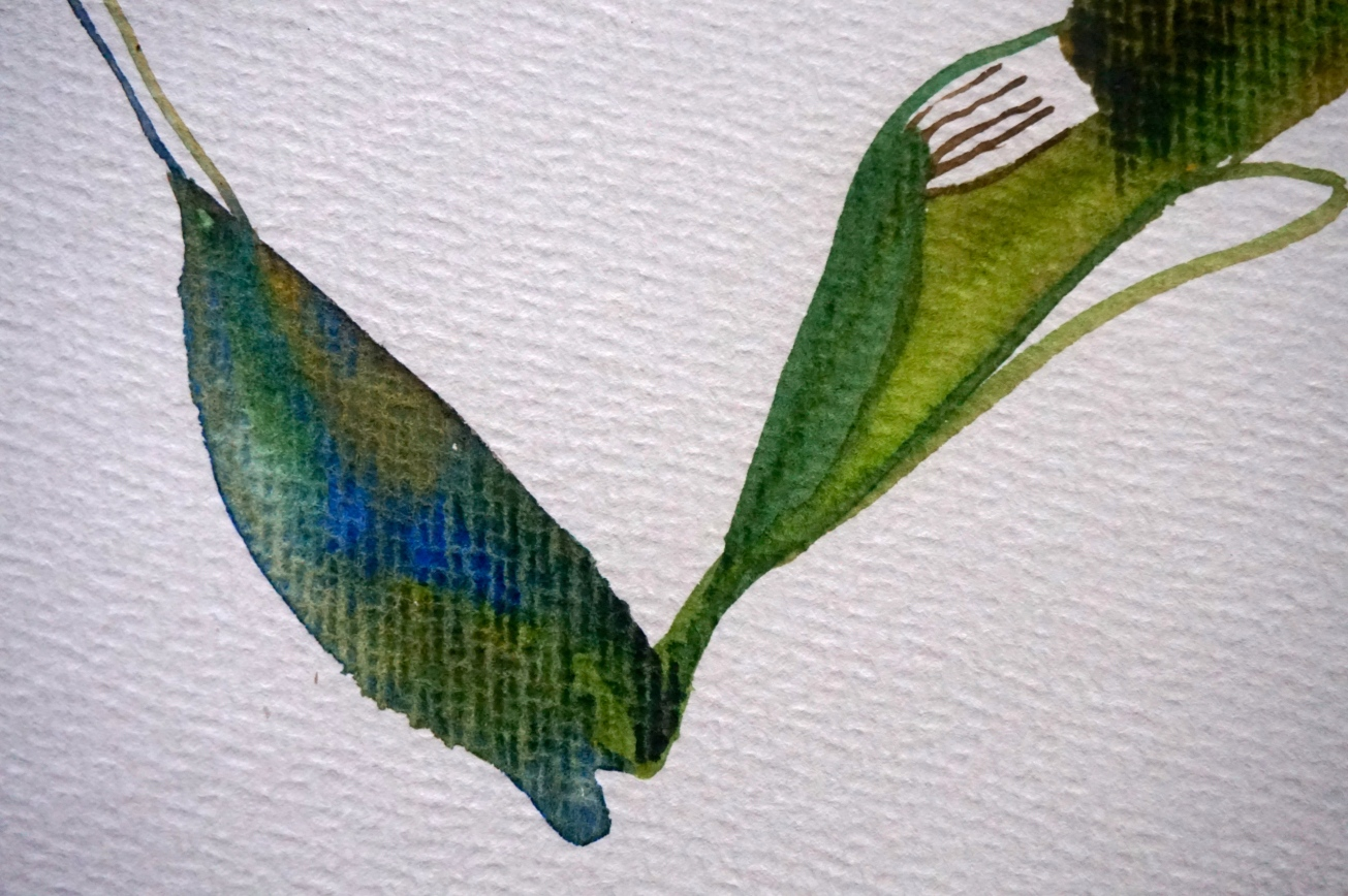 Verde 5 (el baile), detail, Laura Barbuto, 2013.